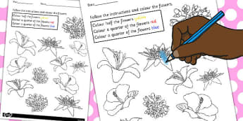 Fractions Colouring Sheet Flowers - fractions, colouring, sheet