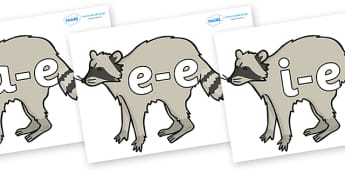 Modifying E Letters on Raccoons - Modifying E, letters, modify, Phase 5, Phase five, alternative spellings for phonemes, DfES letters and Sounds