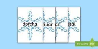 Winter Words on Snowflakes - Gaeilge - Jack Frost translated resources Gaeilge ROI,Irish
