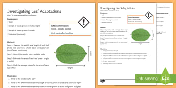 Leaf Adaptations Investigation Instruction Sheet Print-Out - Investigation Help Sheet, science practical, method, instructions, plant, plants, leaf, leaves, leaf