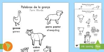 Farm Words Coloring Sheet Spanish (Latin)/US English - animals, words, color, kindergarten, immersion , translation