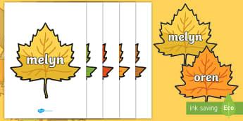 Geiriau Lliwiau ar Dail yr Hydref Posteri Arddangos - lliwiau, dail, geirfa, colours, leaf, words, poster, arddangos, display, poster, hydref, autumn,Wels