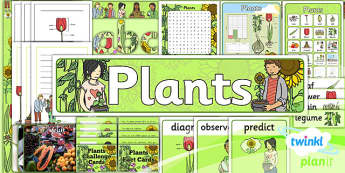 PlanIt - Science Year 2 - Plants Unit: Additional Resources