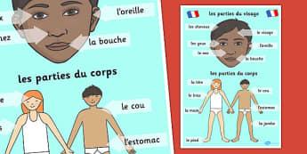French Body Parts Posters - French, Body, Parts, Posters, France