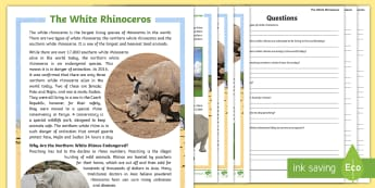 The White Rhinoceros Differentiated Reading Comprehension Activity - rhino, rhinoceros, animals, wildlife, conservation, comprehension, reading skills