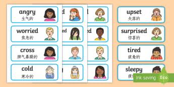 Emotions Word Cards English/Mandarin Chinese - emotions, word cards, flashcards,  feelings, special needs, labels communication, speech and languag