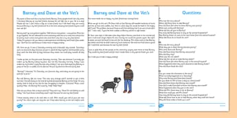 Barney and Dave at the Vet's Story Differentiated Reading Comprehension Activity - People who help us, Vet, Veterinary Nurse, Receptionist, Veterinary Surgery, examination, medicine, injection, dog, animals, happy, sad, worried, best friends, thank y