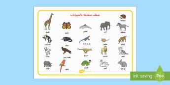 ورقة الكلمات والصفات المتعلقة بالحيوانات  - ورقة، مفردات، صفات، حيوانات، كتابة، وتعبير، تمارين، ت