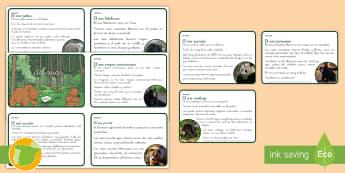 Tarjetas educativas: Los osos - osos, negro americano, pardo, polar, tibetano, anteojos, panda, perezoso, malayo, oso, trivial, educ