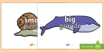 Size Words on Whales and Snails A4 Display Posters English/Italian - adjectives, VCOP, describing, display, poster, , tasty, scary, ugly, beautiful, colourful sharp, bou