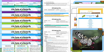EYFS Life Cycle of a Butterfly Bumper Planning Pack - EYFS Life Cycle of a Butterfly, early years planning, continuous provision, adult led, enhancements,