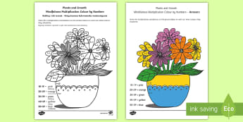 Plants and Growth Themed Mindfulness Multiplication Colour by Numbers English/Polish - Plants and Growth Themed Mindfulness Multiplication Colour by Numbers - plants, growth, mindfulness,