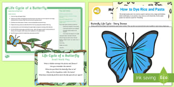 Life Cycle of a Butterfly Small-World Play Idea and Printable Resource Pack - EYFS Life Cycle of a Butterfly, imaginative play, role-play, smallworld, small world, science play,