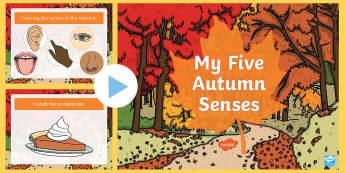 My Five Autumn Senses PowerPoint  - My Five Autumn Senses PowerPoint  - autumn, Powerpoint autumn, five senses ppt, seasons, weather, le
