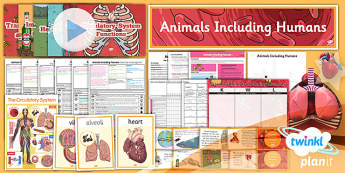 PlanIt - Science Year 6 - Animals Including Humans Unit Pack