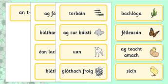 Spring Word Cards Gaeilge - irish, gaeilge, Word cards, Spring, Word Card, flashcard, flashcards, lambs, daffodils, new life, flowers, buds, plants, growth