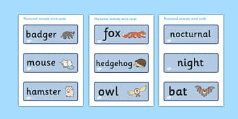 Nocturnal Animals Word cards - animals, nocturnal, night, cards, word cards, flashcards, mole, owl, badger, bat, toad, mouse, hedgehog, fox, rabbit, cat, hamster, shadow, reflection, reflective