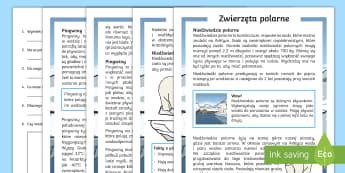 Czytanie ze zrozumieniem Zwierzęta polarne - czytanie, zrozumienie, zima, zrozumieniem, tekst, pisany, tekstu, polski, język, pytania, spawdzian
