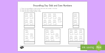 Groundhog Day Odd and Even Math Activity Sheet - Groundhog Day worksheet, Groundhog Day math, odd and even numbers