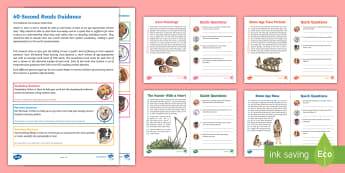 LKS2 60-Second Reads: Stone Age Activity Pack - Speed Read, Sixty Second Reads, Assessment, Reading, Timed Reading, Reading Dogs