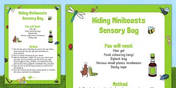 Hiding Minibeasts Sensory Bag - EYFS, Minibeasts, Creepy Crawlies, Bugs