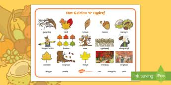 Autumn Word Mat Welsh - mat, geiriau, hydref, Cymraeg, ysgrifennu, word, mat, autumn, lietracy, Welsh, llythrennedd, Welsh