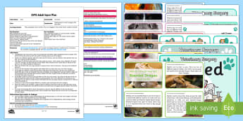 EYFS Vet Care Adult Input Plan and Resource Pack - EYFS Pets, Animals, National Pet Month, pets, pet care, Vet's, Veterinary surgery, medicine, poorly