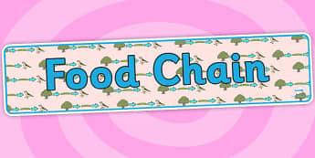 Food Chain Display Banner - food chains, food chain banner, food chain display, food chains display header, ks2 science topics, feeding relationships, ks2