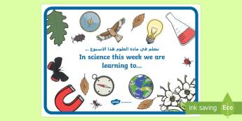 In Science this Week Display Poster Arabic/English - science display, news, Arabic