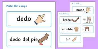 Tarjetas de vocabulario - Las partes del cuerpo - las partes del cuerpo, esquema, vocabulario