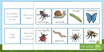 Tarjetas de emparejar: Descripciones de los bichos - libélula, abeja, caracol, hormiga, típula, escarabajo, mariposa, oruga, gusano, mariquita, cochini