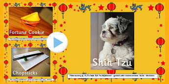 Chinese New year Photo PowerPoint - powerpoint, power point, interactive, powerpoint presentation, presentation, slide show, slides, chinese new year, chinese new year photos, photos, images, pictures, discussion aid, discussion points