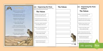 Falcon Poem Sequencing Verses Activity Sheet - Science: Living World, falcon, poem, English, Literacy, poster, display, rhyme, UAE, middle east, ac