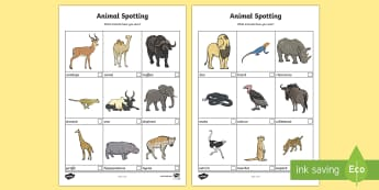 African Animal Spotting Sheet (Safari) - Safari, spotting sheet, worksheet, african animals, lion, cheetah, puma, jaguar, rhino, hippo, elephant, giraffe, antelope