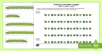Ordering Caterpillar Lengths Activity English/Italian - Italian, bilingual, EAL, dual language, translated, order, length, catapillar, catterpillar, lenght,