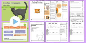 Year 4 Term 2 Non-Fiction Reading Assessment Guided Lesson Teaching Pack - non-chronological, report, factfile, comprehension, retrieval, information text, cats