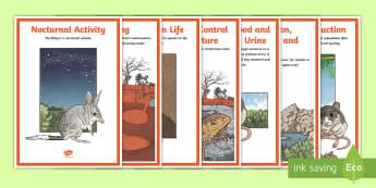 Australian Desert Animal Adaptations Display Posters - ACSSU043, animal behaviour, adapting, desert habitat, ACSSU211