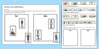 Sorting Activities - TEACCH, Autism, ASD, independent work, individual workstation, emotions