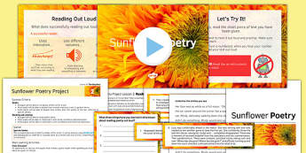 Sunflower Poetry Project Teaching Pack Lesson 2 - poetry, lesson