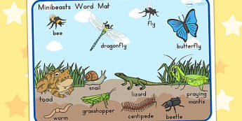 Minibeasts Scene Word Mat - word mats, keywords, keyword mat