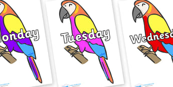 Days of the Week on Macaws - Days of the Week, Weeks poster, week, display, poster, frieze, Days, Day, Monday, Tuesday, Wednesday, Thursday, Friday, Saturday, Sunday