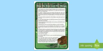 How the Kiwi Lost His Wings Display Poster - New Zealand, wildlife, kiwi, birds, native birds, legends, myths, information cards,