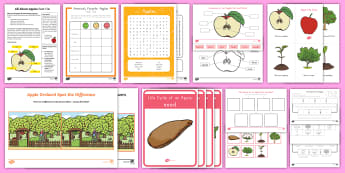 Life Cycle of an Apple Activity Pack - apple life cycle, apple tree life cycle, apples, fall, autumn, growing fruit, fruit