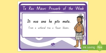 Learn a Whakatauki Every Week Display Posters - Whakatauki, phrases, letters, maori alphabet.