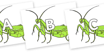 A-Z Alphabet on Praying Mantis - A-Z, A4, display, Alphabet frieze, Display letters, Letter posters, A-Z letters, Alphabet flashcards