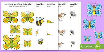Size Ordering to Support Teaching on The Crunching Munching Caterpillar - EYFS, Early Years, KS1, The Crunching Munching Caterpillar, Sheridan Cain, life cycle of a butterfly