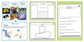 Slipper Project Design Make and Evaluate Teaching Pack - DT