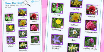 Flowers Hunt Sheet - worksheets, worksheet, flower, activity