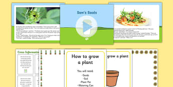 Sam's Seeds Story PowerPoint and Resource Pack - EYFS, Early years, plants and growth, growing, life cycles, Understanding the world