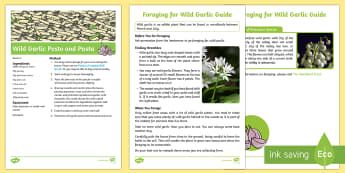 Woodland Foraged Wild Garlic Pesto and Pasta Recipe Resource Pack - woodland, woods, forest, food, cooking, outdoor, forest school